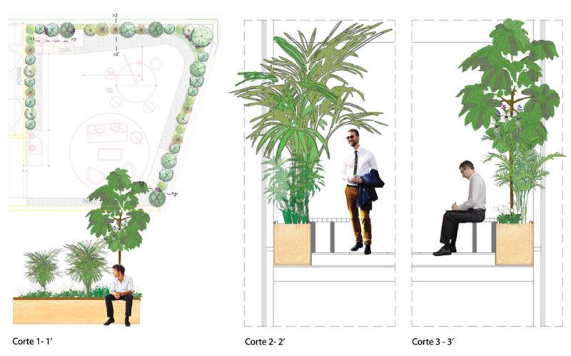 jardineras para oficinas plantas de interior