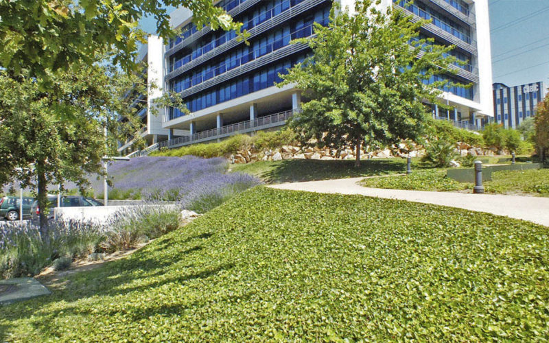 landscaping headquaters