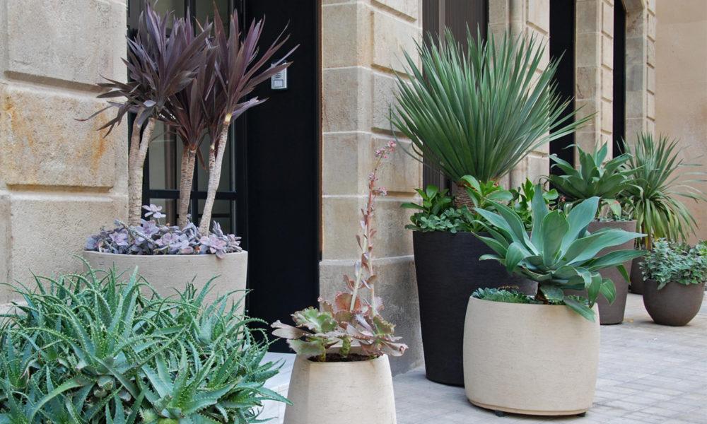 paisajismo de Hotel diseño macetas fachada macetas de cerámica artesal plantas exóticas Jardineria Botania